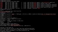 zabbix_security_related_bug.jpg